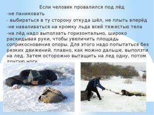 Если человек провалился под лёд -не паниковать - выбираться в ту сторону отк