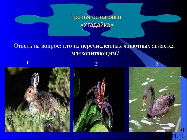 Ответь на вопрос: кто из перечисленных животных является млекопитающим? Треть...