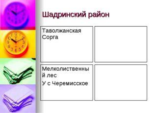 Шадринский район