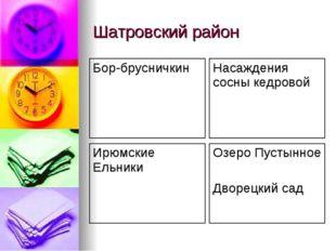 Шатровский район