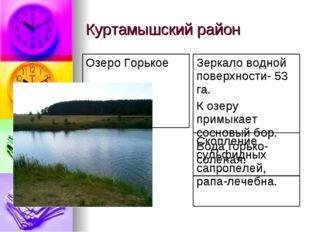 Куртамышский район