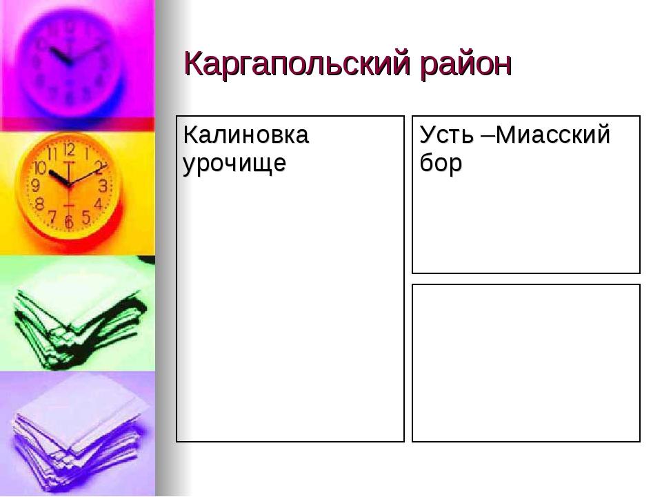 Каргапольский район