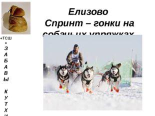 Елизово Спринт – гонки на собачьих упряжках «ТСШ» З А Б А В Ы К У Т Х И