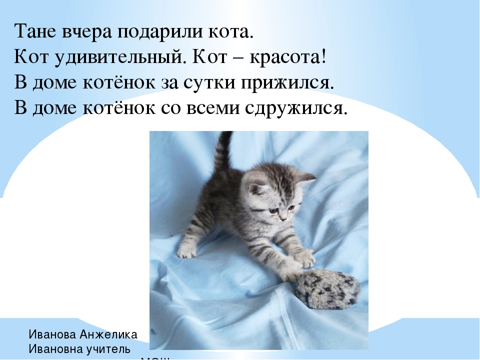 Тане вчера подарили кота. Кот удивительный. Кот – красота! В доме котёнок за...