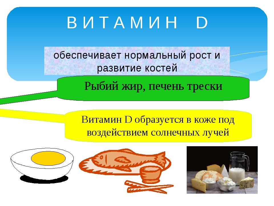 В И Т А М И Н D обеспечивает нормальный рост и развитие костей Рыбий жир, печ...
