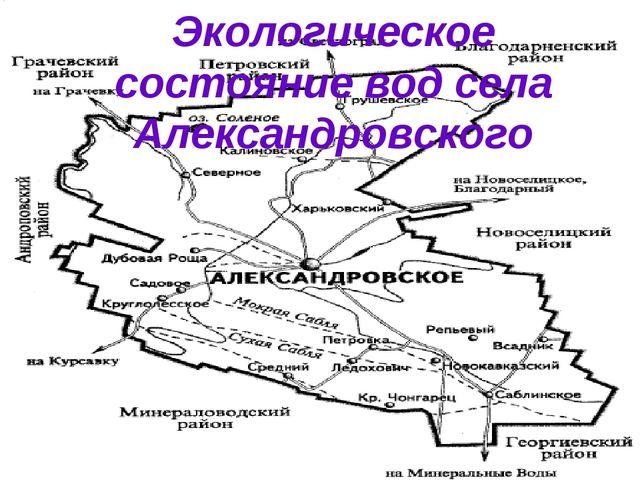 Экологическое состояние вод села Александровского