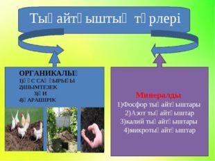Минералды 1)Фосфор тыңайтқыштары 2)Азот тыңайтқыштар 3)калий тыңайтқыштары 4