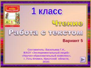 Вариант 5 Составитель: Васильева Г.Н., МАОУ «Экспериментальный лицей» «Научно