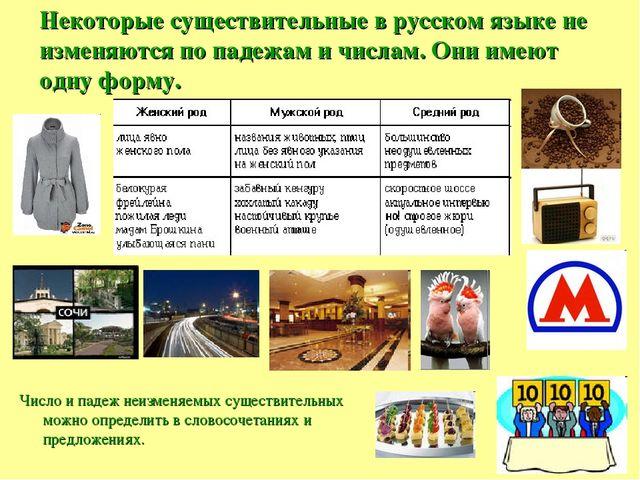 Некоторые существительные в русском языке не изменяются по падежам и числам....