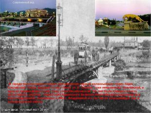 В городе был построен и открыт для движения первый железный мост через Терек