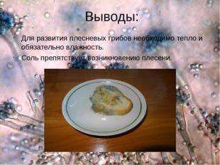 Выводы: Для развития плесневых грибов необходимо тепло и обязательно влажнос