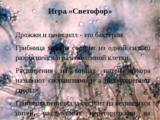Игра «Светофор» Дрожжи и пеницилл - это бактерии. Грибница мукора состоит из...