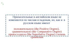 Прилагательные в английском языке не изменяются по числам и падежам, но, как