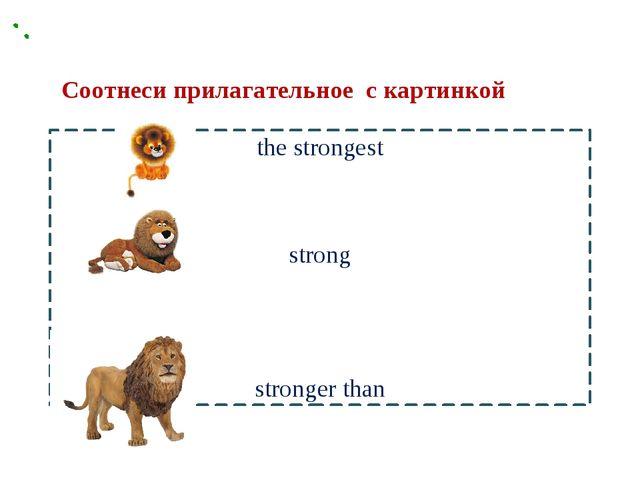 the strongest strong stronger than Соотнеси прилагательное с картинкой