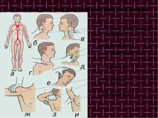 Остановка кровотечения при помощи пережатия артерий Височная Нижнечелюстная