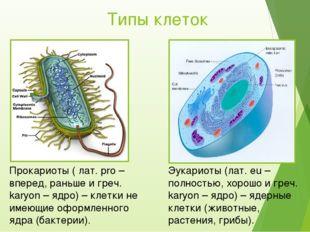 Типы клеток Прокариоты ( лат. pro – вперед, раньше и греч. karyon – ядро) – к