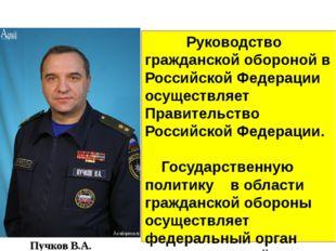 Руководство Руководство гражданской обороной в Российской Федерации осуществ