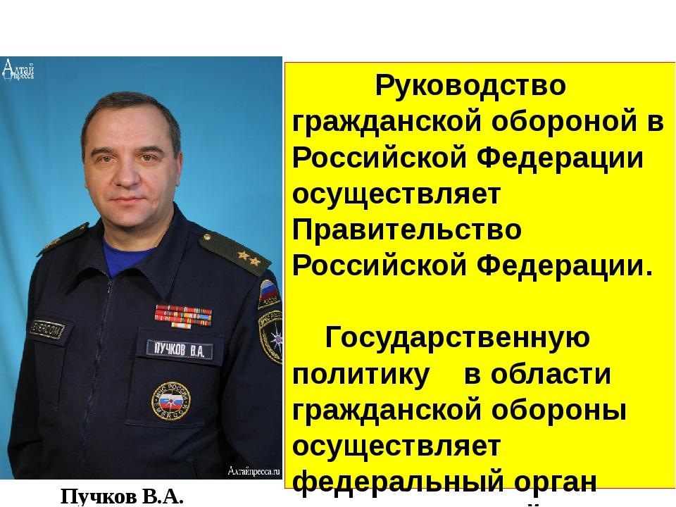Руководство Руководство гражданской обороной в Российской Федерации осуществ...