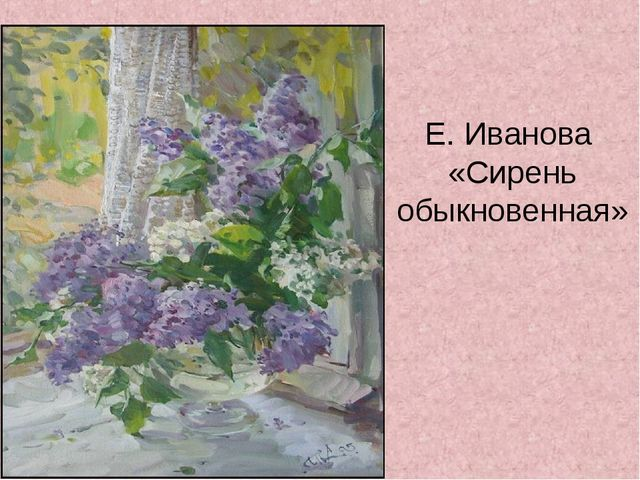 Е. Иванова «Сирень обыкновенная»