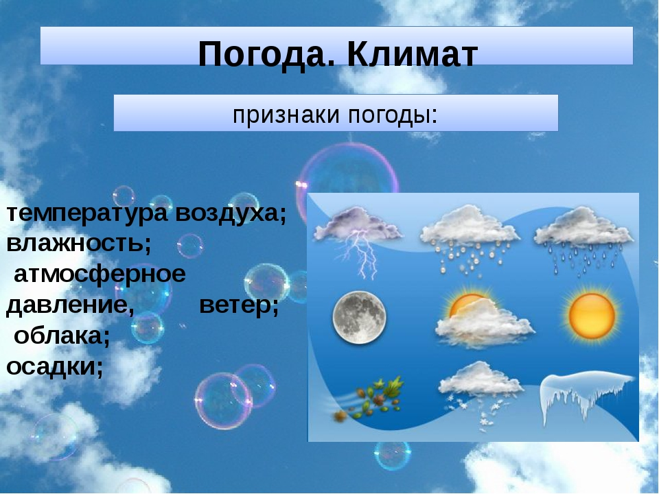 признаки погоды: температура воздуха; влажность; атмосферное давление, ветер;...
