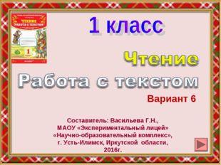 Вариант 6 Составитель: Васильева Г.Н., МАОУ «Экспериментальный лицей» «Научно