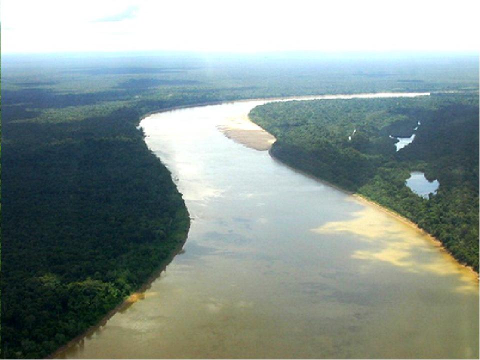 Через всю территорию Бразилии течет самая величайшая река в мире Амазонка, и...