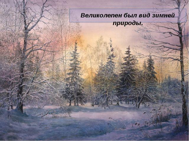 Великолепен был вид зимней природы.