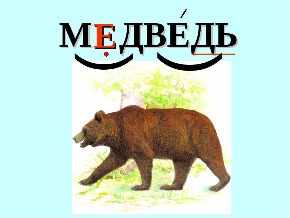 М ДВЕДЬ Е ( (