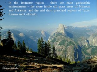 In the immense region , there are main geographic environments – the more fer