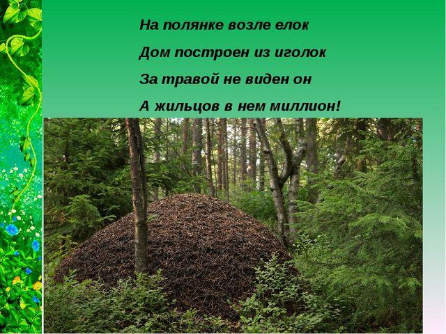 На полянке возле елок Дом построен из иголок За травой не виден он А жильцов...