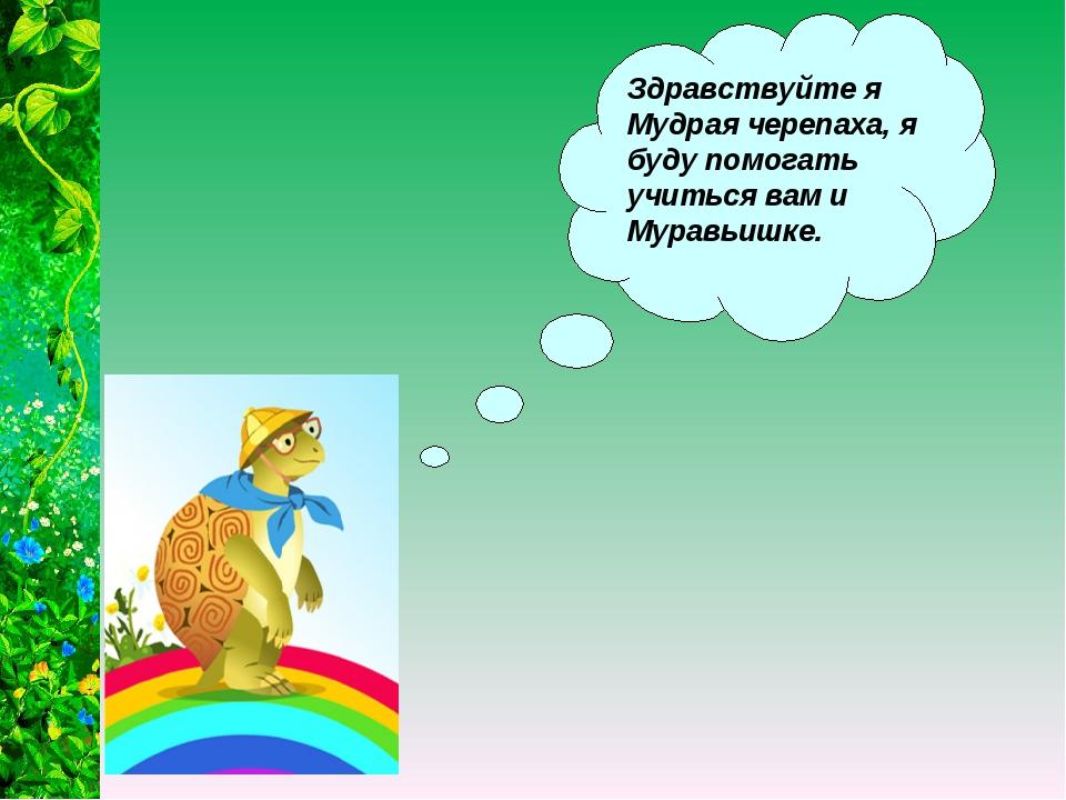 Здравствуйте я Мудрая черепаха, я буду помогать учиться вам и Муравьишке.