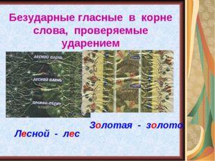 Безударные гласные в корне слова, проверяемые ударением. Лесной - лес Золотая
