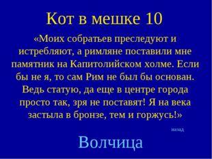 Кот в мешке 10 «Моих собратьев преследуют и истребляют, а римляне поставили м
