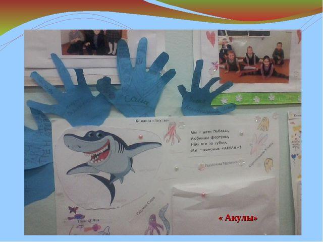 « Акулы»