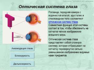 Оптическая система глаза Аккомодация глаза Близорукость Дальнозоркость