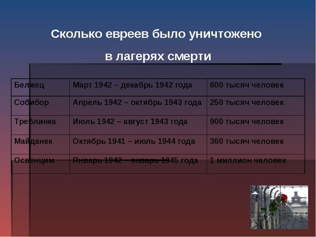 Сколько евреев было уничтожено в лагерях смерти БелжецМарт 1942 – декабрь 19...