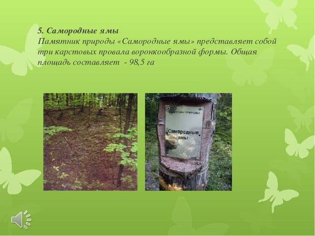 5. Самородные ямы Памятник природы «Самородные ямы» представляет собой три ка...