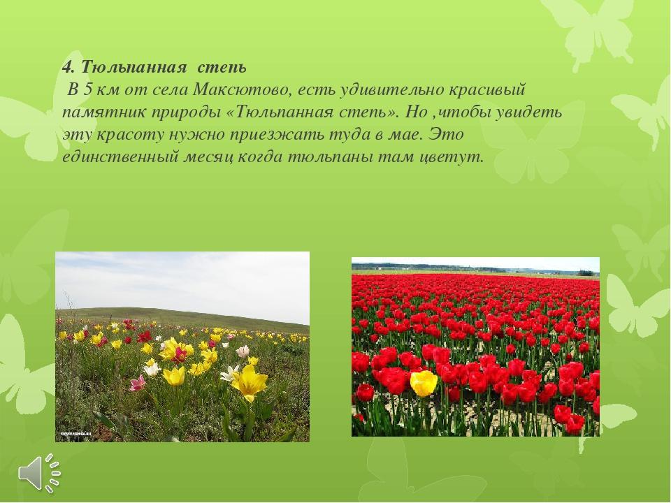 4. Тюльпанная степь В 5 км от села Максютово, есть удивительно красивый памят...