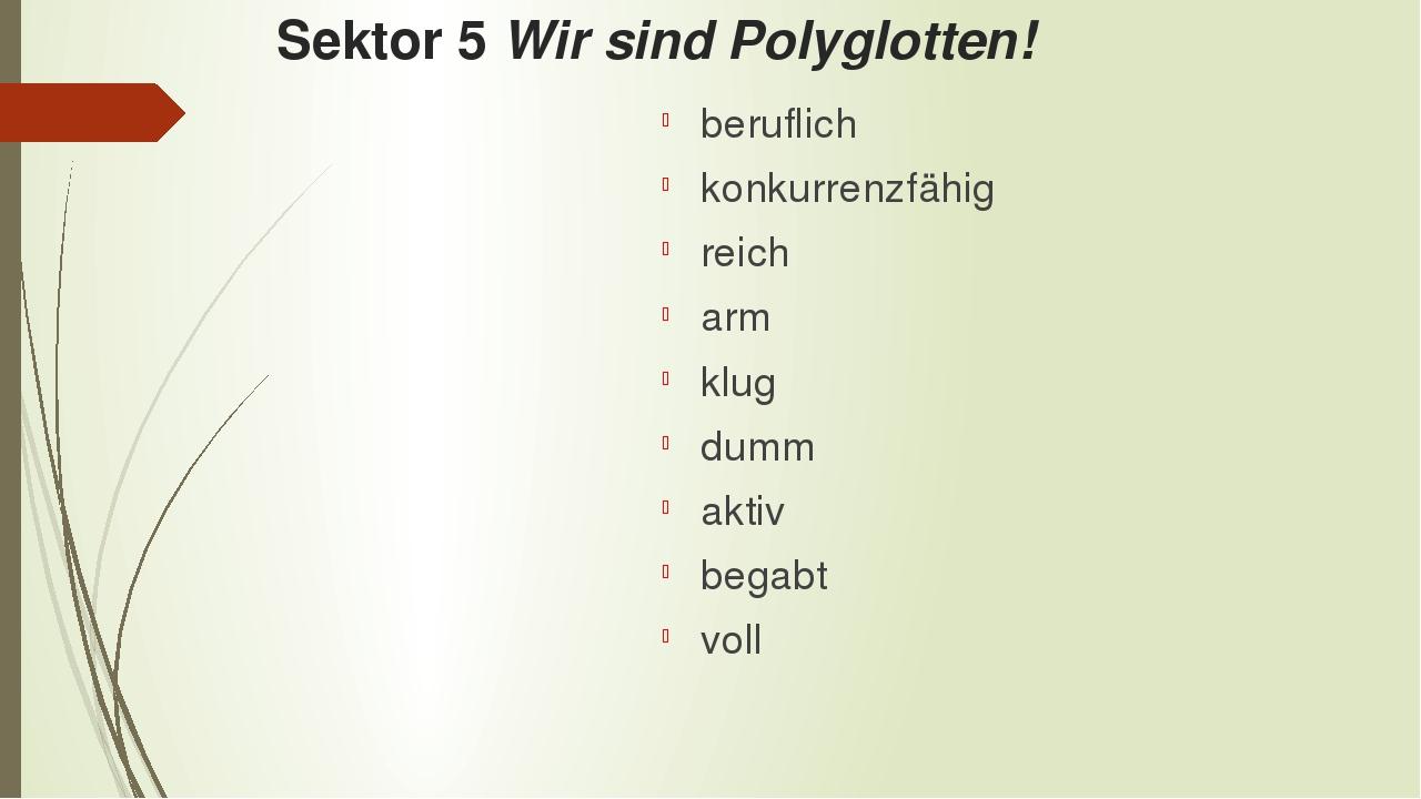 Sektor 5 Wir sind Polyglotten! beruflich konkurrenzfähig reich arm klug dumm...