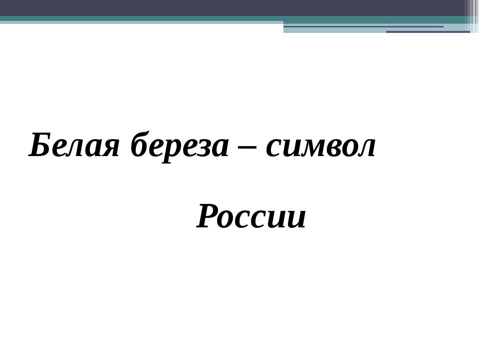 Белая береза – символ России