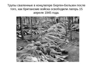 Трупы сваленные в концлагере Берген-Бельзен после того, как британские войска