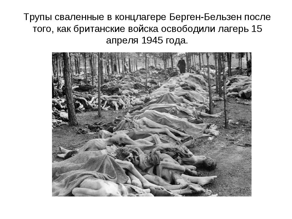 Трупы сваленные в концлагере Берген-Бельзен после того, как британские войска...