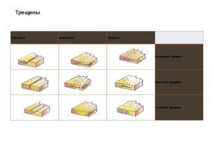 Трещины Пластевые Кромочные Торцовые  Метиковые трещины Морозные трещины Отл