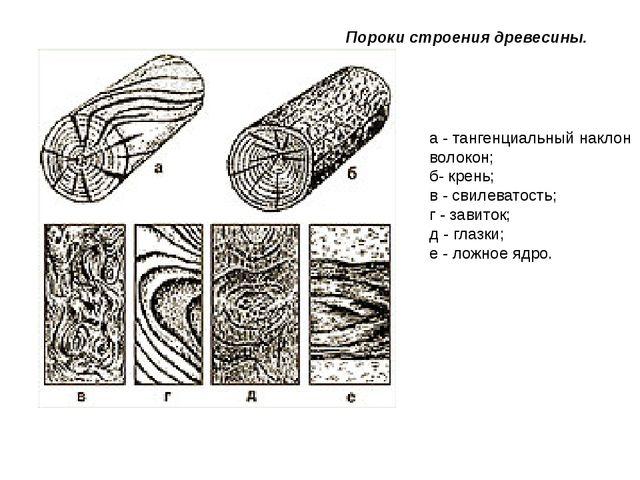 Пороки строения древесины. а - тангенциальный наклон волокон; б- крень; в - с...