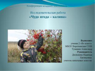 Конференция младших школьников Исследовательская работа «Чудо ягода – калина