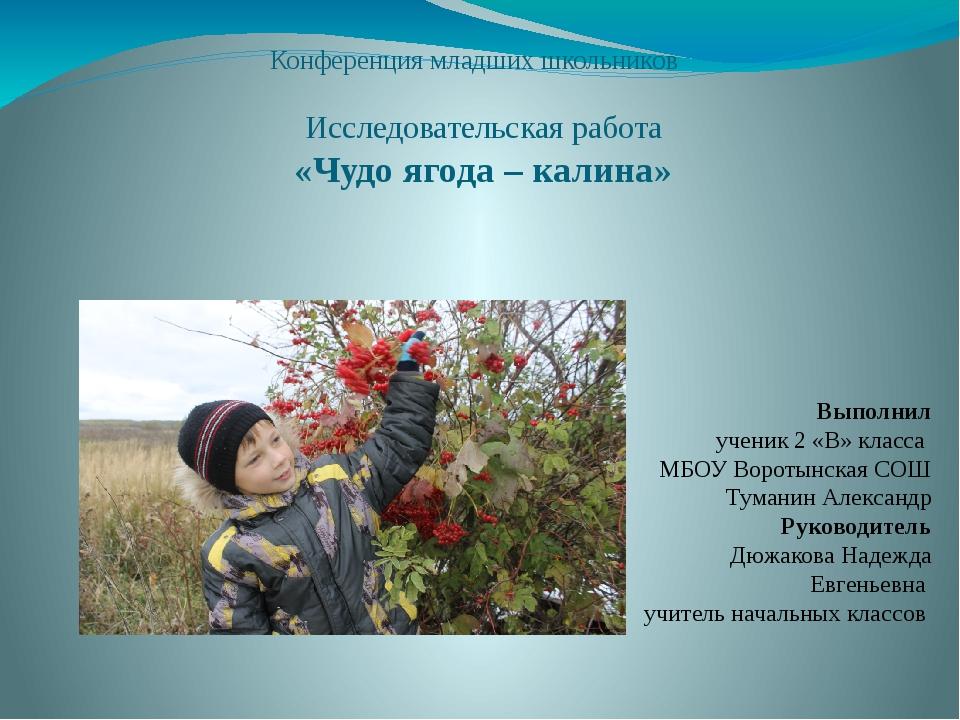 Конференция младших школьников Исследовательская работа «Чудо ягода – калина...