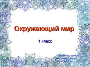Окружающий мир 1 класс Подготовила: учитель начальных классов Быковская С.Н.