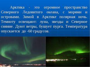 Арктика - это огромное пространство Северного Ледовитого океана, с морями и