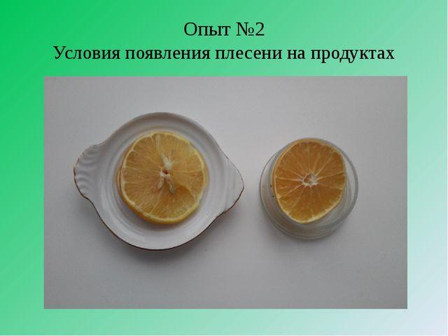 Опыт №2 Условия появления плесени на продуктах