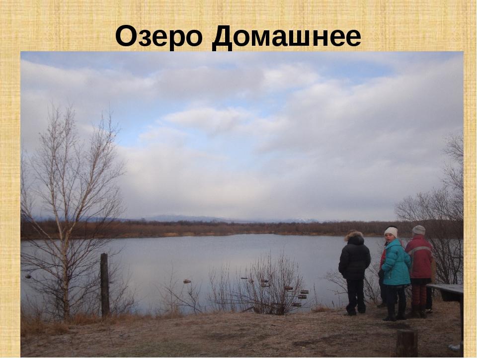 Озеро Домашнее